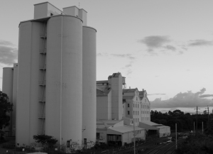 Flour Mill Summer Hill 1