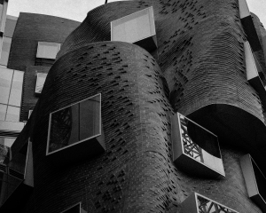 UTS by Gehry © Ashley Golsby 2014.